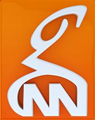 GNN Urdu